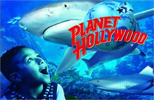 Sea Life London Aquarium & Lunch at Planet Hollywood