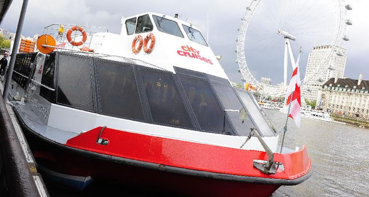 Thames Circular Sightseeing Cruise